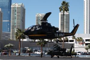 14.-Cobra-and-Apache-IMG_7835