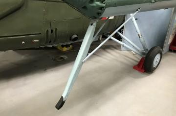 Mi-1-tail-prot