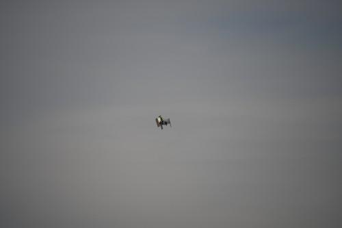 Jayu_KNUQ_Moffett-Airfield_CA_20200228_KS5_0154_Photo-Ken-Swartz.jpg