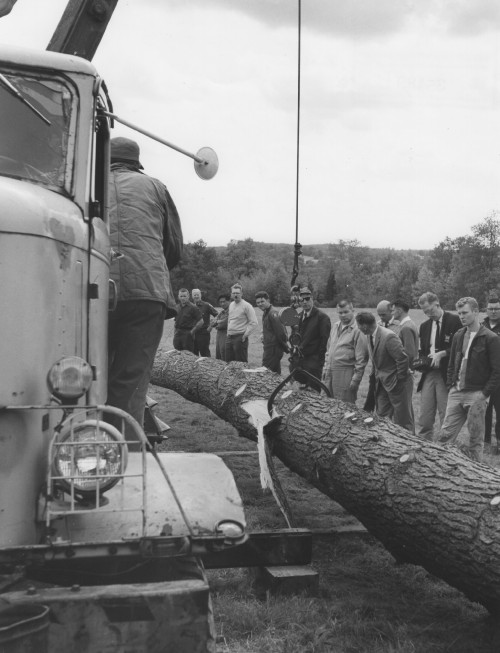IMMEDIATE RELEASE 9/25/62  WEIGHING IN -- Log is weighed with truck crane lifting and scaled (between cable and choker) measuring 8,500 pounds. Normal payload capacity of Sikorsky S-58 helicopter is 4,000 pounds.   Sikorsky Aircraft photo